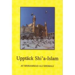 Upptäck Shia-Islam
